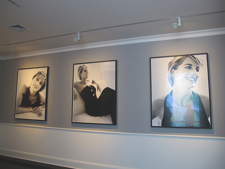 Portraits of the late Princess Diana - MATE