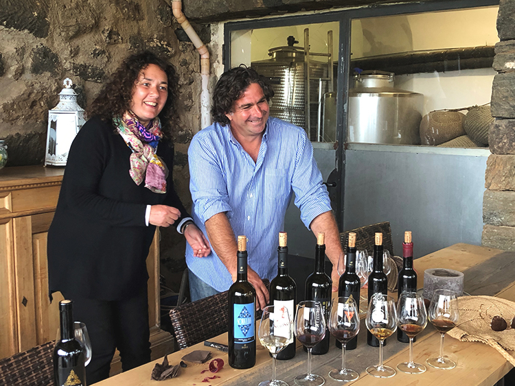 Wine tasting in a local winery, Sicily